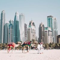 Abu-Dhabi to Dubai